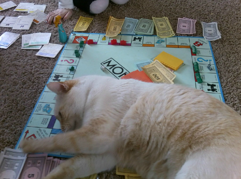 Dominic On Monopoly Board