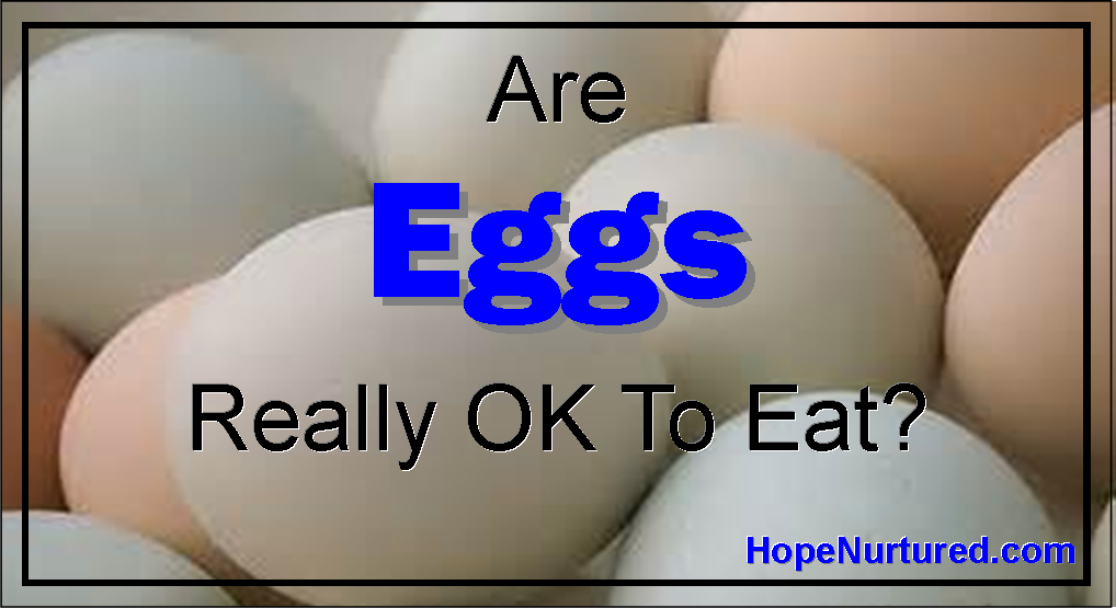 Are Eggs Really OK To Eat? Or are they just too bad for your cholesteral?