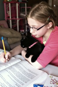 Homeschooling with help