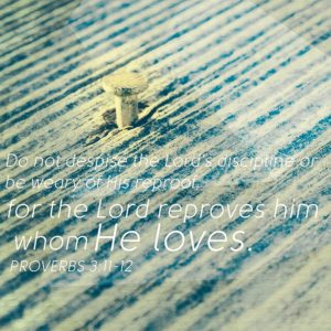 """""""Do not despise the lord's discipline or be weary of His reproof, for the Lord reproves him whom He loves."""" Proverbs 3:11-12"""